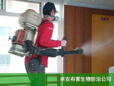 杀蛀虫|蛀虫防治|蠹虫-虹舟杀虫除虫公司